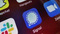 Signal, Aplikasi Chatting yang Kini Sedang Naik Daun