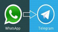 3 Langkah Mudah Pindahkan Chat Dari WhatsApp Ke Telegram