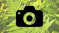 Cara Mengecilkan Ukuran Gambar ( File .JPG) Secara Online